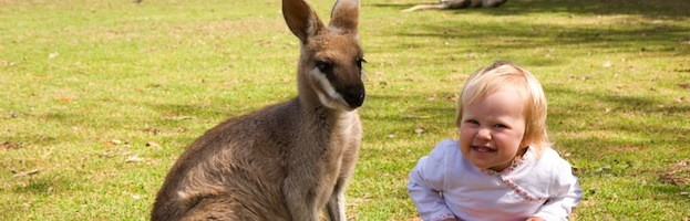 Kangaroos and Humans